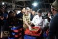 Kota Bogor Ekspor 7 Ton Maggot ke Inggris